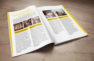 Brochure Crforma